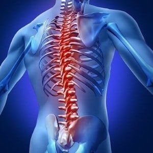 diseases-spinal-column